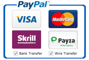 master card, visa, skrill & payza icon